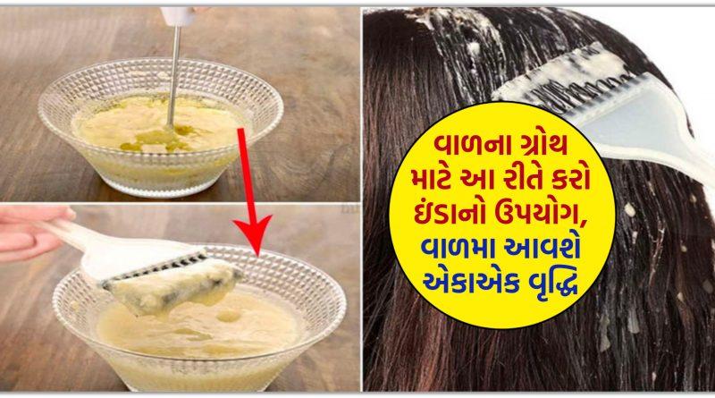 આ રીતે વાળ પર લગાવો ઈંડા, થોડા જ દિવસોમાં થઈ જશે તમારા વાળ લાંબા અને જાડા