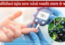 ડાયાબિટીસના દર્દીઓ માટે જાંબુ છે રામબાણ ઇલાજ, જાણો કેવી રીતે કરે છે કંટ્રોલમાં